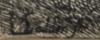 Lodewijk de Vadder: A Winding River (IV)